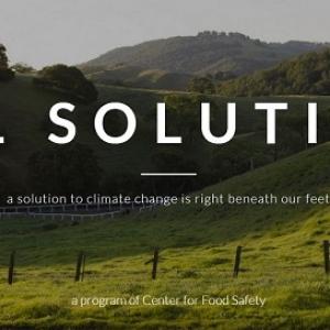 Soil Solutions