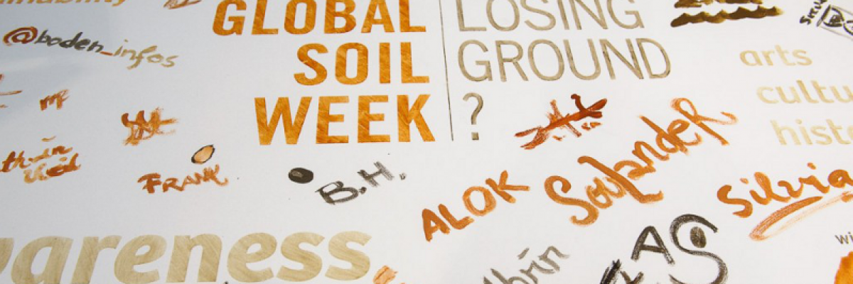 Global Soil Week 2013 – Losing Ground?