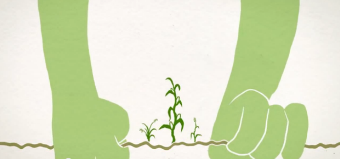 Video: The value of soil