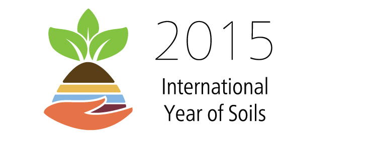 Some Cautionary Tales for the International Year of Soils