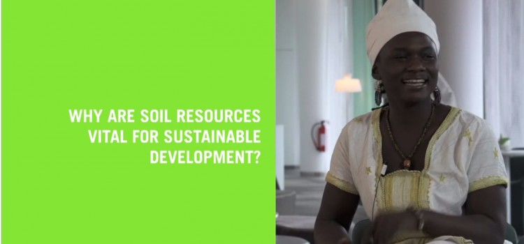 Video: 90 Seconds For Soils
