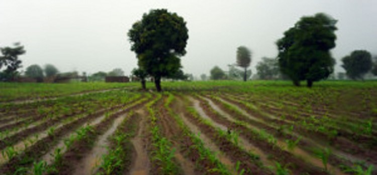 Guest Blog by CIAT: Land management matters: Malawian communities create maps to find answers