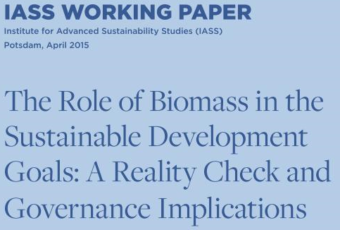 How can we avoid the Risk of Unsustainable Sustainable Development Goals (SDGs)? IASS Releases Working Paper