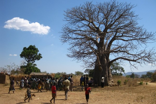 "2030 Agenda for Sustainable Development: ""We need to involve civil society…"""