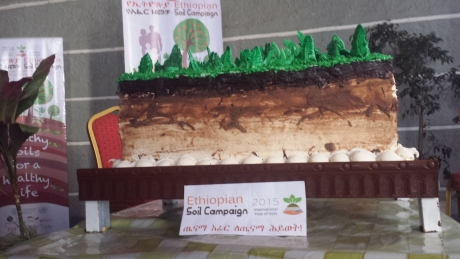 First Ethiopian Soil Week Highlights Significance of Small Farmers for Food Security and Prosperity